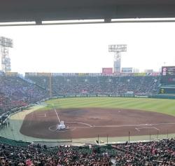 阪神甲子園球場です!